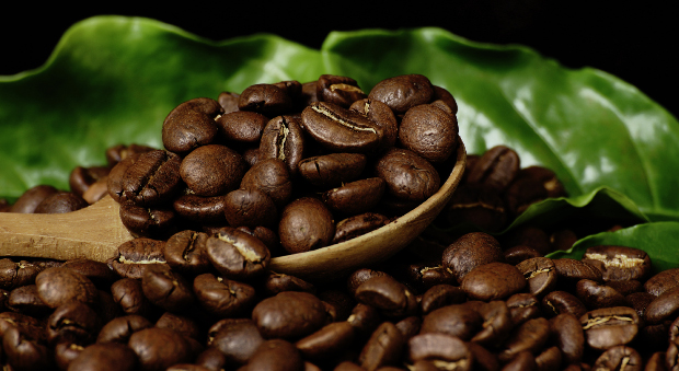 Mejor café en grano