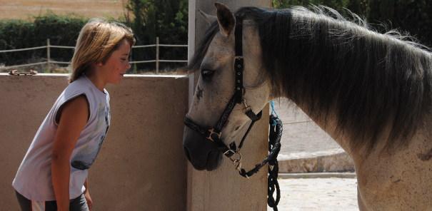 precio de montar a caballo